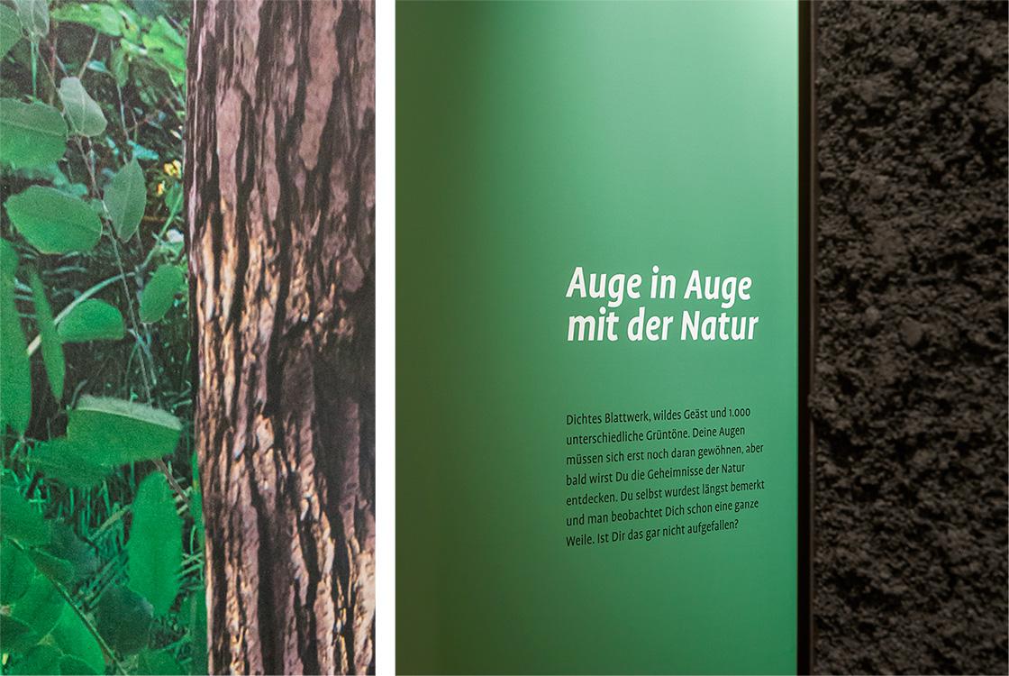 Ausstellungsgestaltung: Ein Stück Wildnis Döberitzer Heide Heinz Sielmann Stiftung 12